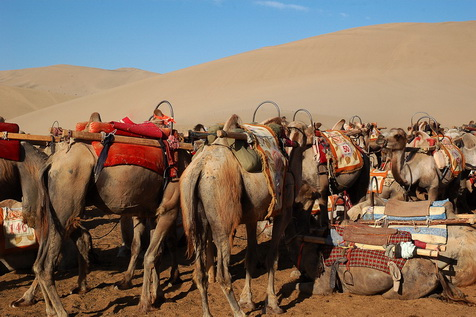 The Silk Road Photo Gallery